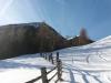 sneg-ze-na-zacetku-gozdne-steze